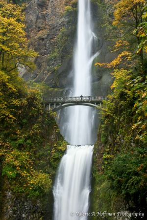 Multnomah Falls, OR.jpg